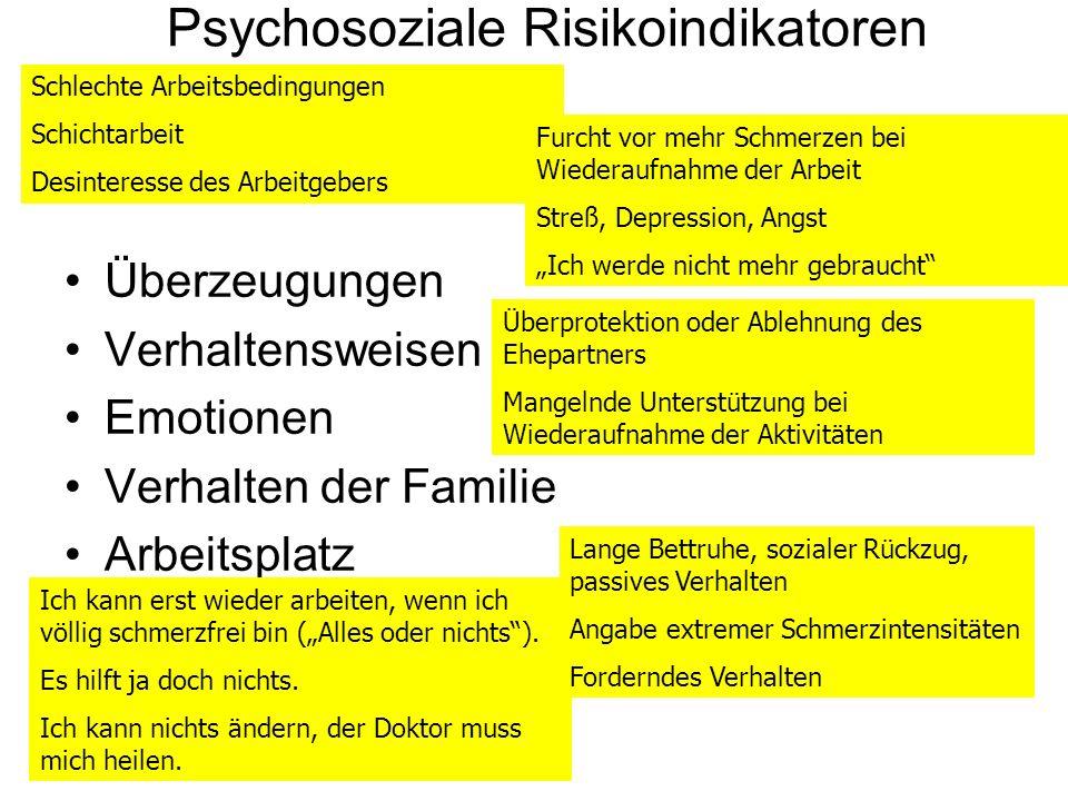 Psychosoziale Risikoindikatoren