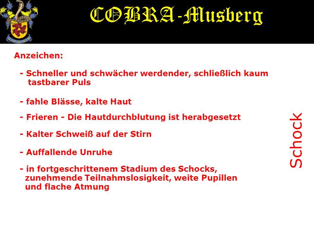 COBRA-Musberg Schock Anzeichen: