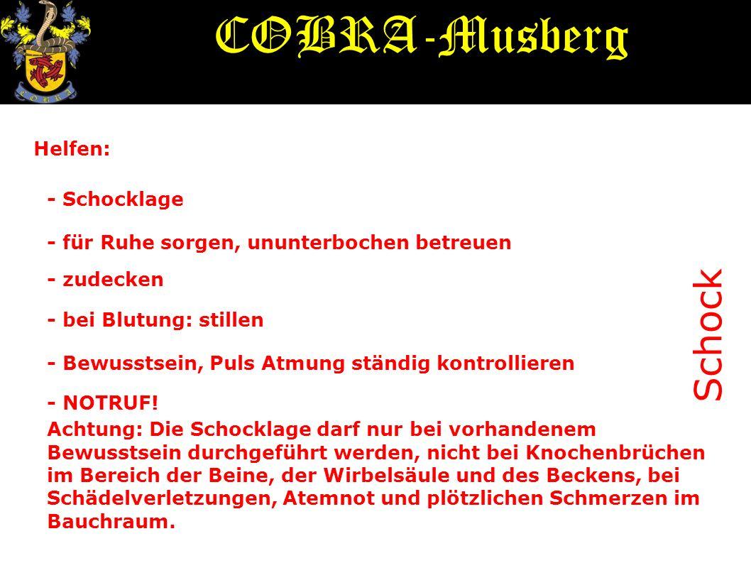 COBRA-Musberg Schock Helfen: - Schocklage