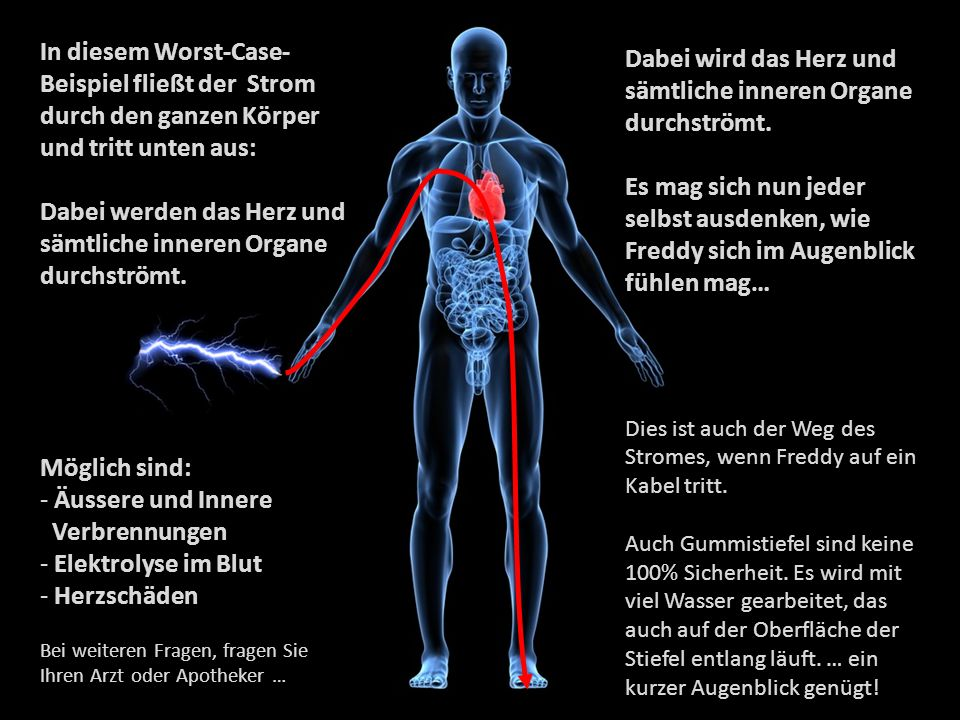 Dabei werden das Herz und sämtliche inneren Organe durchströmt.