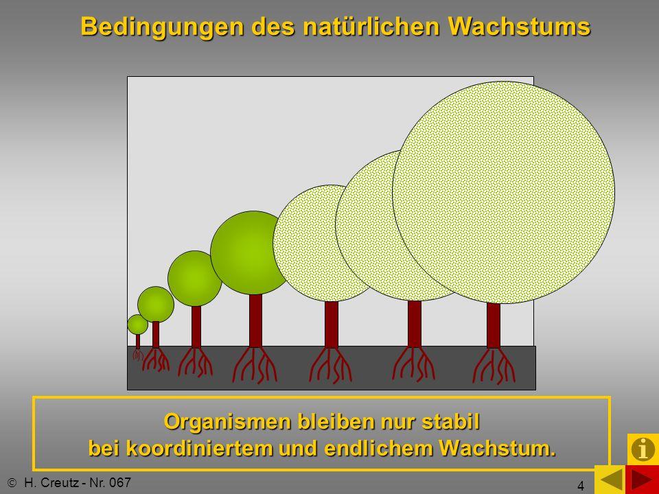 Bedingungen des natürlichen Wachstums