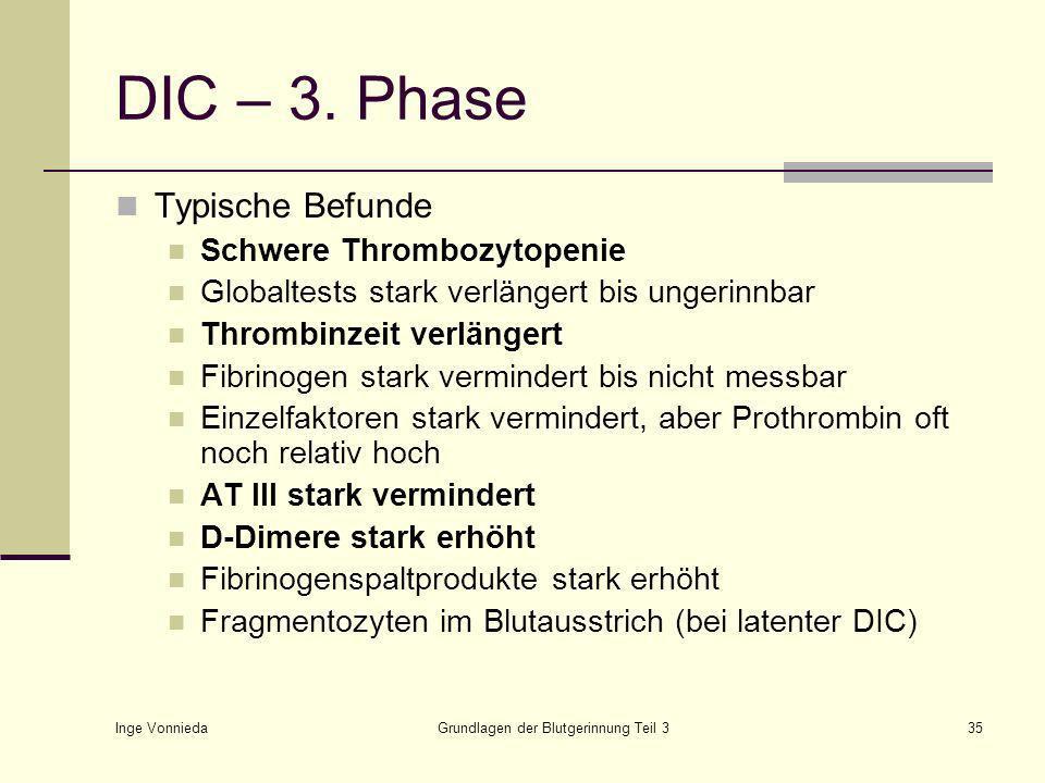 Grundlagen der Blutgerinnung Teil 3