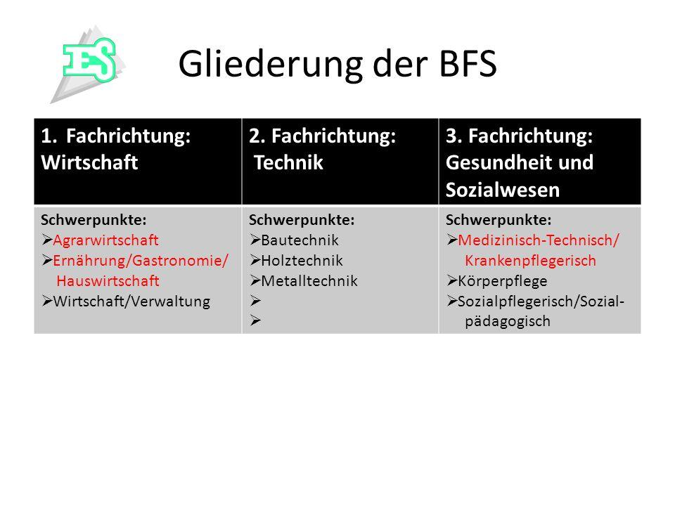 Gliederung der BFS Fachrichtung: Wirtschaft 2. Fachrichtung: Technik