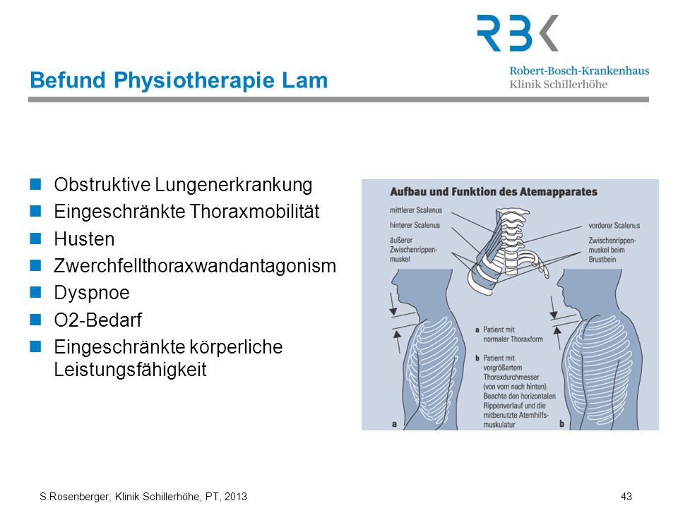 Befund Physiotherapie Lam