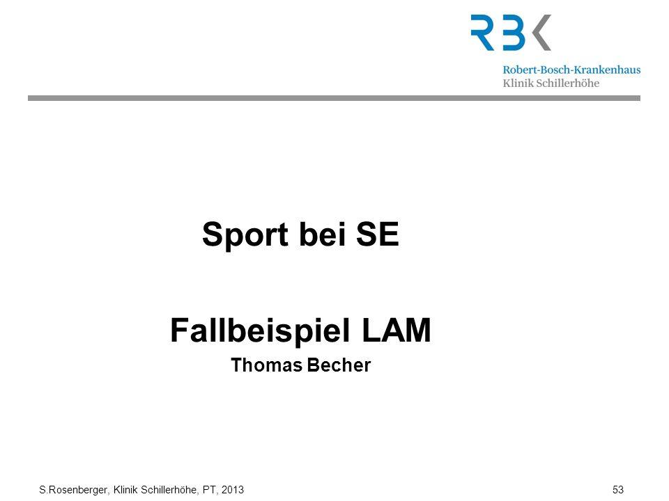 Sport bei SE Fallbeispiel LAM