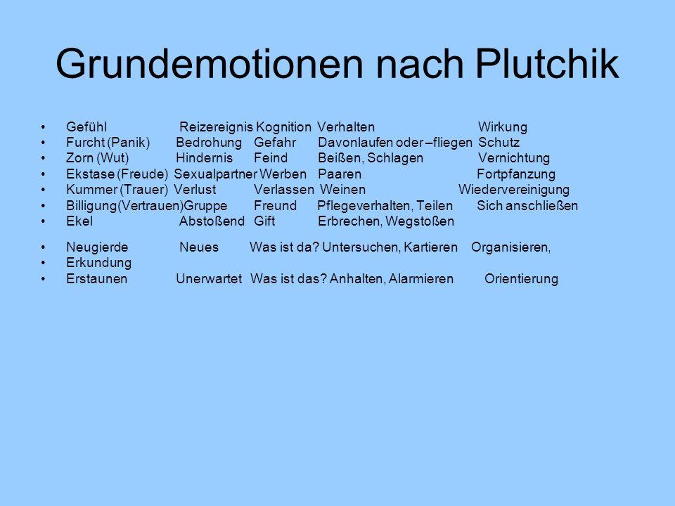 Grundemotionen nach Plutchik