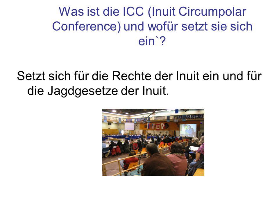 Was ist die ICC (Inuit Circumpolar Conference) und wofür setzt sie sich ein`