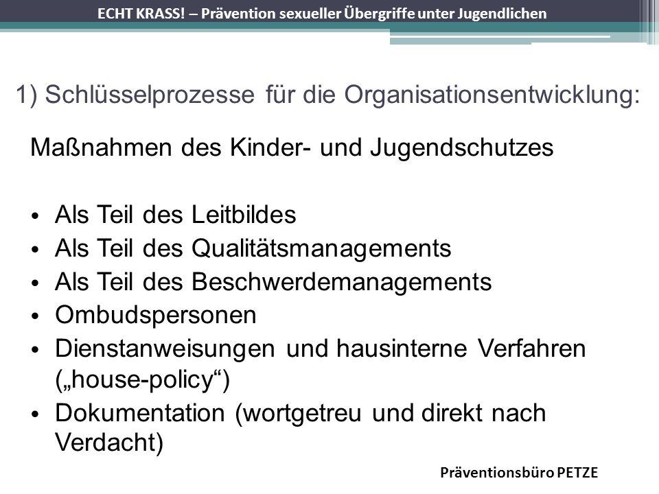 1) Schlüsselprozesse für die Organisationsentwicklung: