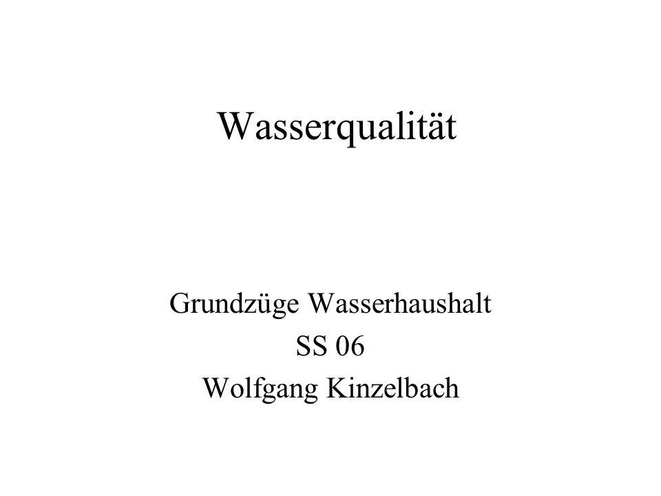 Grundzüge Wasserhaushalt SS 06 Wolfgang Kinzelbach