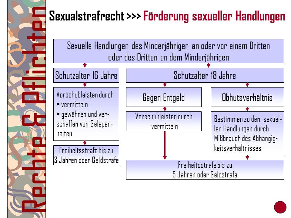 Sexualstrafrecht >>> Förderung sexueller Handlungen