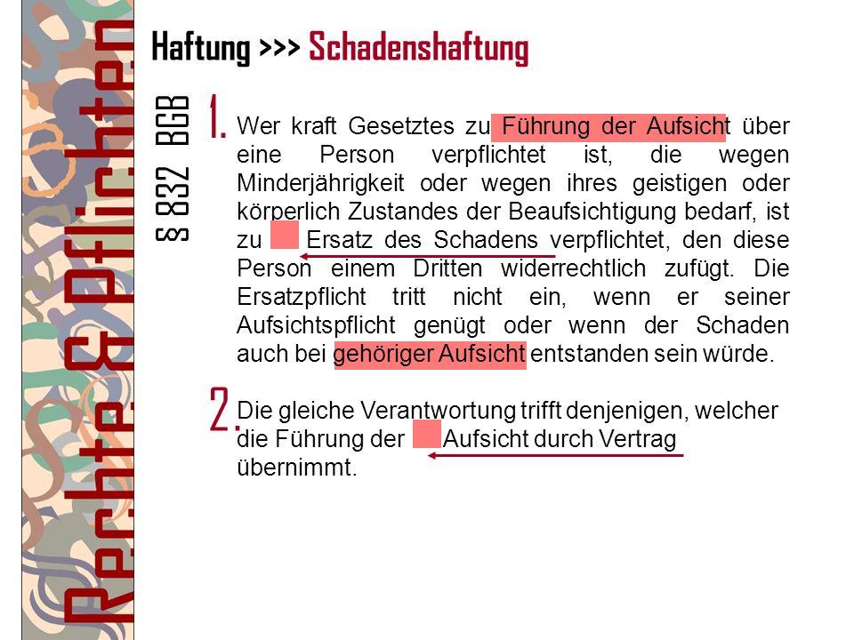 Haftung >>> Schadenshaftung