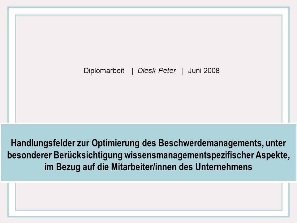 Diplomarbeit | Dlesk Peter | Juni 2008