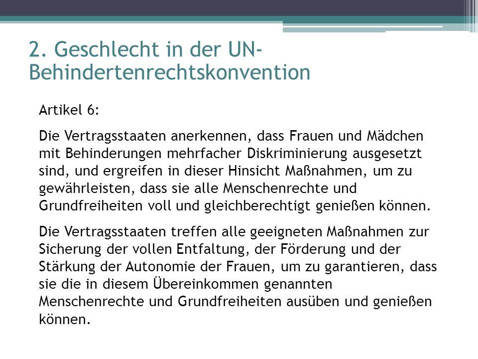 2. Geschlecht in der UN-Behindertenrechtskonvention
