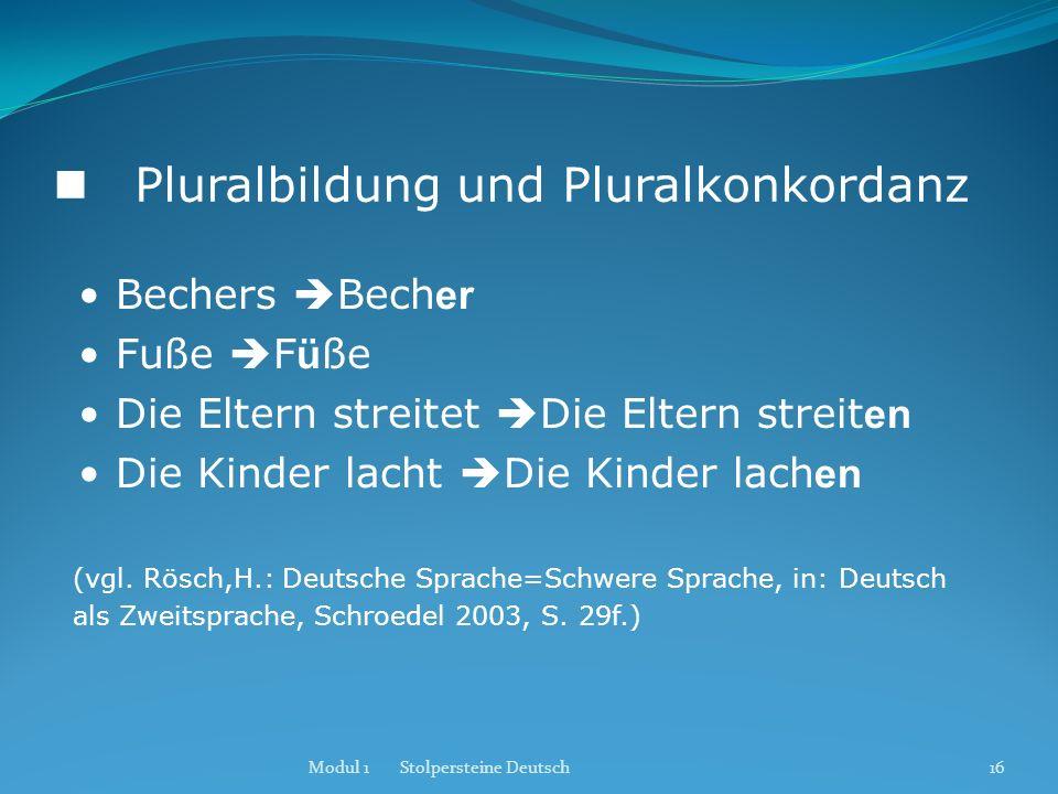  Pluralbildung und Pluralkonkordanz