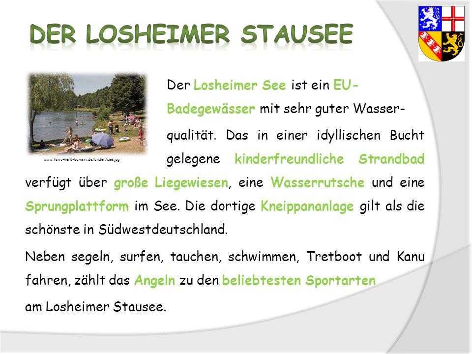 Der Losheimer Stausee
