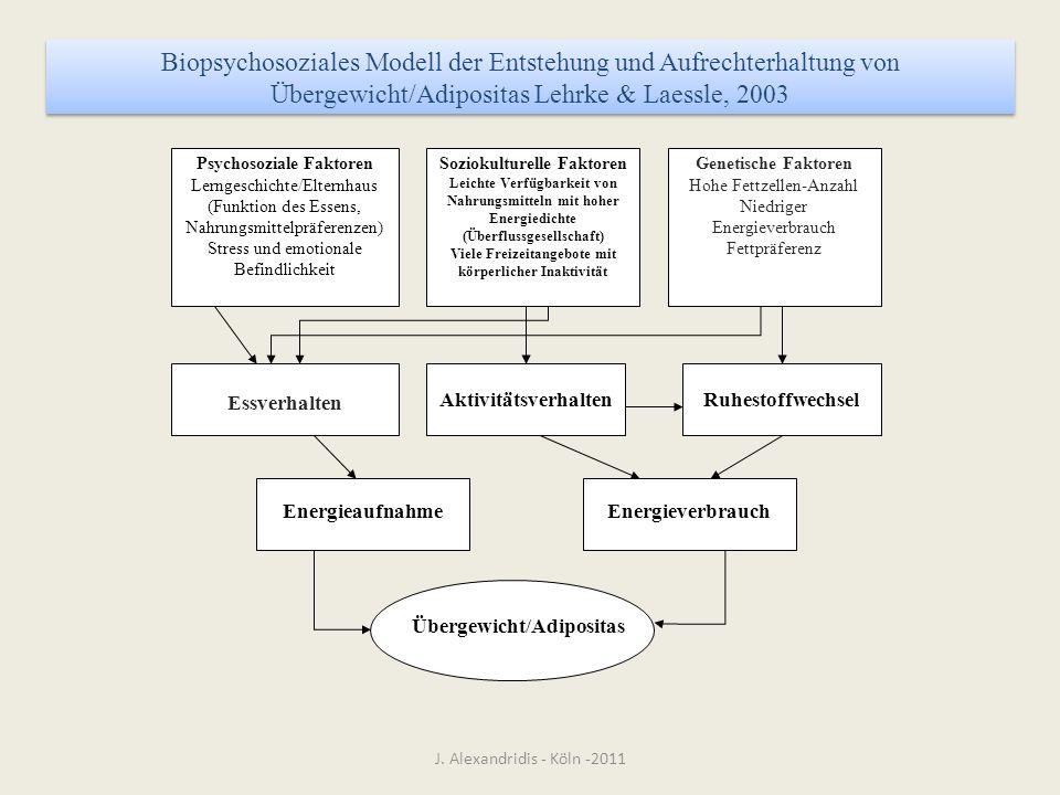 Biopsychosoziales Modell der Entstehung und Aufrechterhaltung von Übergewicht/Adipositas Lehrke & Laessle, 2003