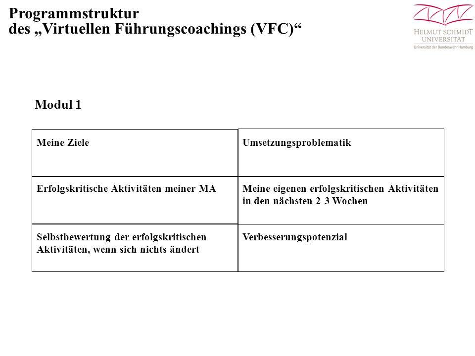"""Programmstruktur des """"Virtuellen Führungscoachings (VFC)"""