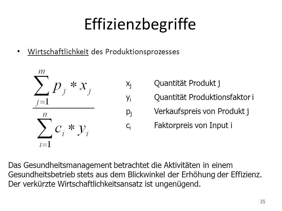 Effizienzbegriffe Wirtschaftlichkeit des Produktionsprozesses