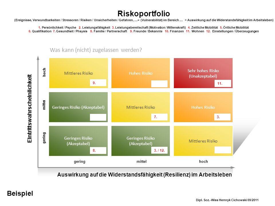 Riskoportfolio (Ereignisse, Verwundbarkeiten / Stressoren / Risiken / Unsicherheiten / Gefahren, …= (Vulnerabilität) im Bereich … > Auswirkung auf die Widerstandsfähigkeit im Arbeitsleben) 1. Persönlichkeit / Psyche 2. Leistungsfähigkeit 3. Leistungsbereitschaft (Motivation / Willenskraft) 4. Zeitliche Mobilität 5. Örtliche Mobilität 6. Qualifikation 7. Gesundheit / Phsysis 8. Familie / Partnerschaft 9. Freunde / Bekannte 10. Finanzen 11. Wohnen 12. Einstellungen / Überzeugungen