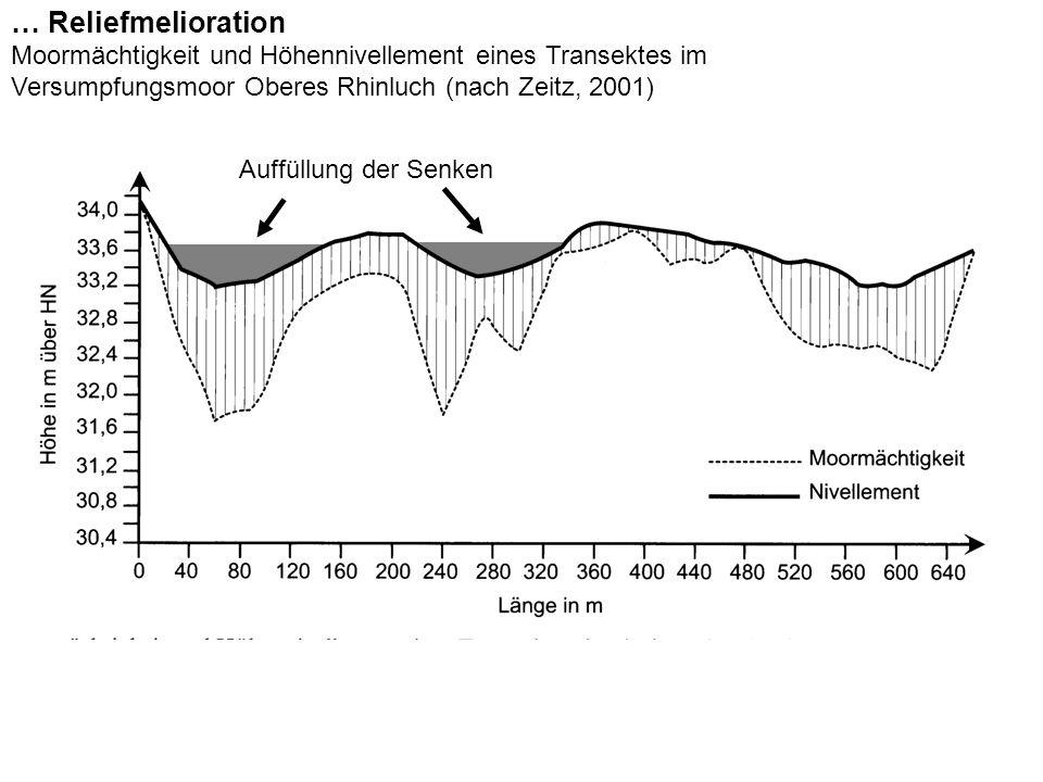 … Reliefmelioration Moormächtigkeit und Höhennivellement eines Transektes im. Versumpfungsmoor Oberes Rhinluch (nach Zeitz, 2001)
