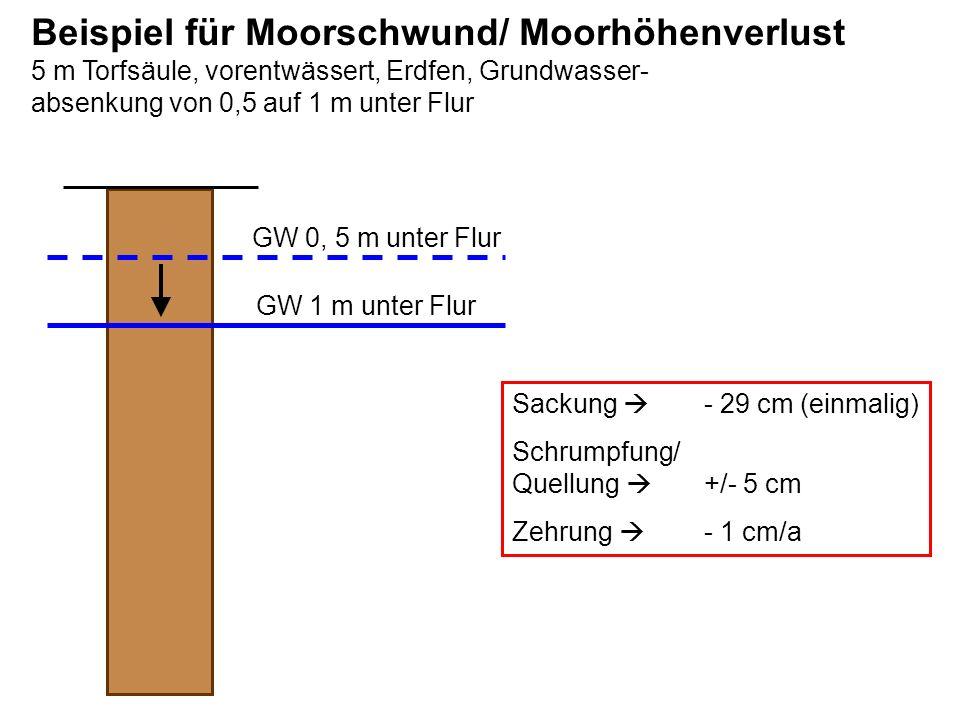Beispiel für Moorschwund/ Moorhöhenverlust