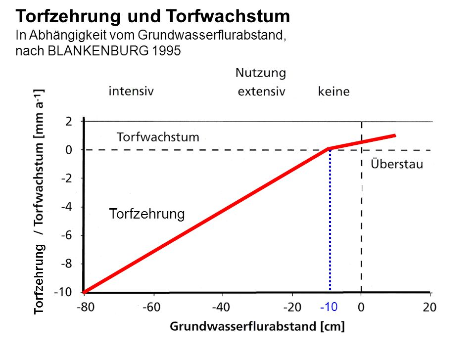 Torfzehrung und Torfwachstum