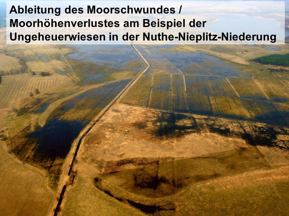Ableitung des Moorschwundes / Moorhöhenverlustes am Beispiel der Ungeheuerwiesen in der Nuthe-Nieplitz-Niederung