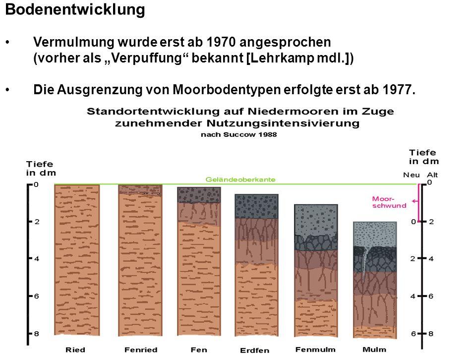 Bodenentwicklung Vermulmung wurde erst ab 1970 angesprochen