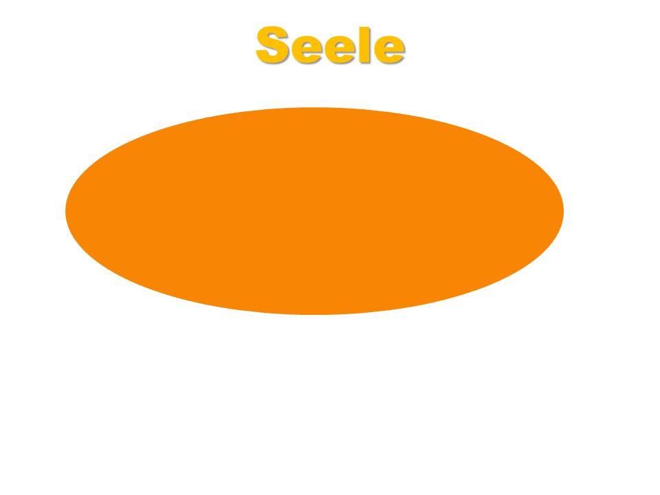 l Seele Beispiel: Seele = Torte mit 16 Stücken (Buttercremtorte)