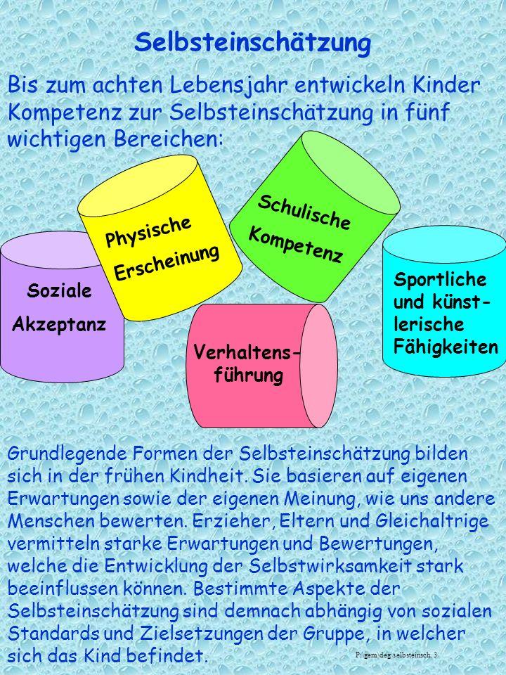 Selbsteinschätzung Bis zum achten Lebensjahr entwickeln Kinder Kompetenz zur Selbsteinschätzung in fünf wichtigen Bereichen: