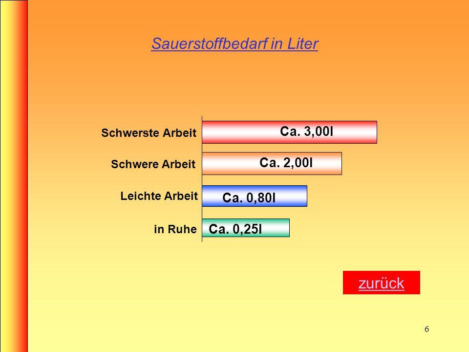 Sauerstoffbedarf in Liter