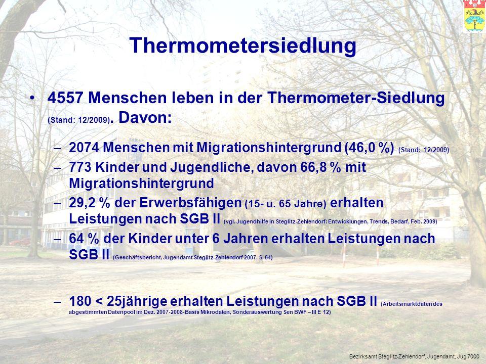 Thermometersiedlung 4557 Menschen leben in der Thermometer-Siedlung (Stand: 12/2009). Davon: