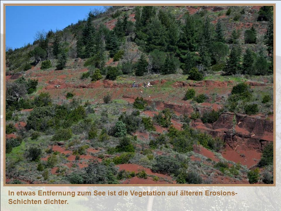 In etwas Entfernung zum See ist die Vegetation auf älteren Erosions-Schichten dichter.
