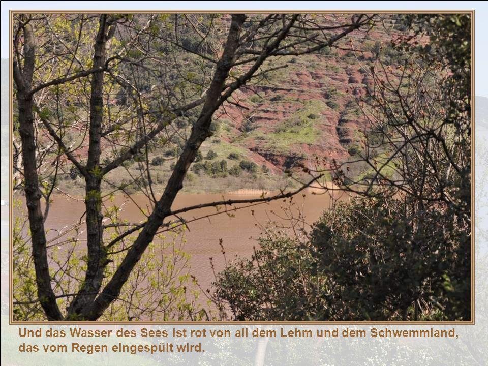 Und das Wasser des Sees ist rot von all dem Lehm und dem Schwemmland, das vom Regen eingespült wird.