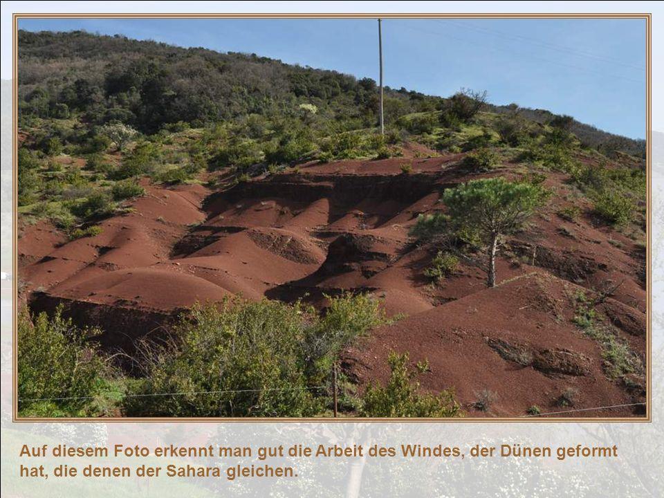 Auf diesem Foto erkennt man gut die Arbeit des Windes, der Dünen geformt hat, die denen der Sahara gleichen.