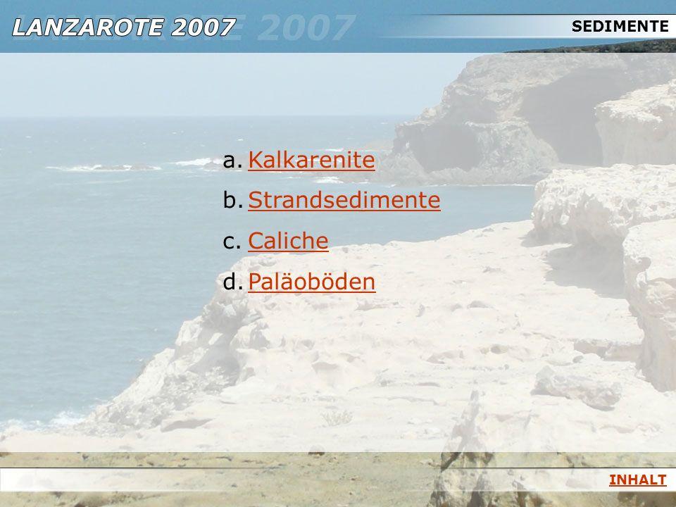 SEDIMENTE Kalkarenite Strandsedimente Caliche Paläoböden INHALT