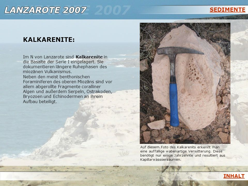 KALKARENITE: SEDIMENTE INHALT