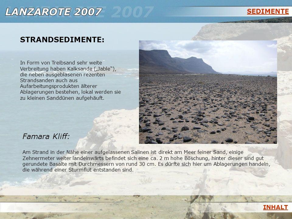STRANDSEDIMENTE: Famara Kliff: SEDIMENTE INHALT