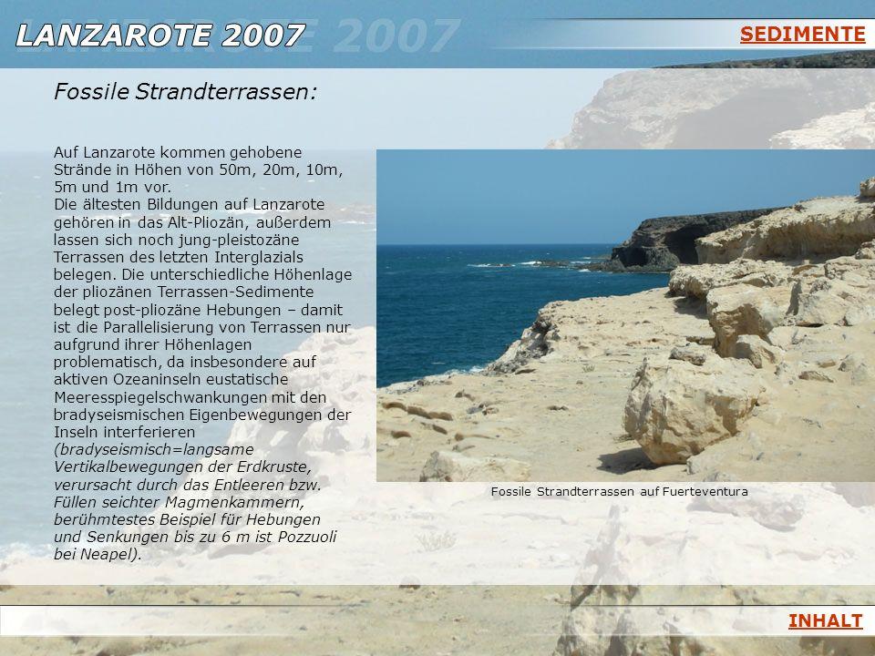 Fossile Strandterrassen: