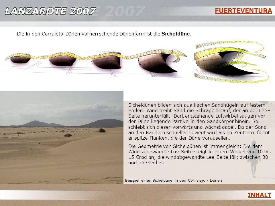 FUERTEVENTURA Die in den Corralejo-Dünen vorherrschende Dünenform ist die Sicheldüne.