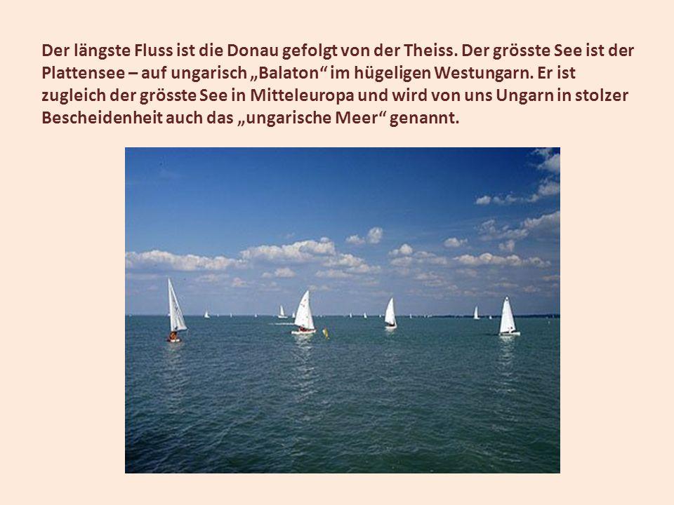 Der längste Fluss ist die Donau gefolgt von der Theiss