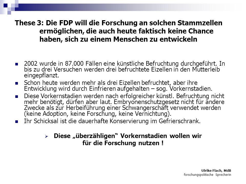 These 3: Die FDP will die Forschung an solchen Stammzellen