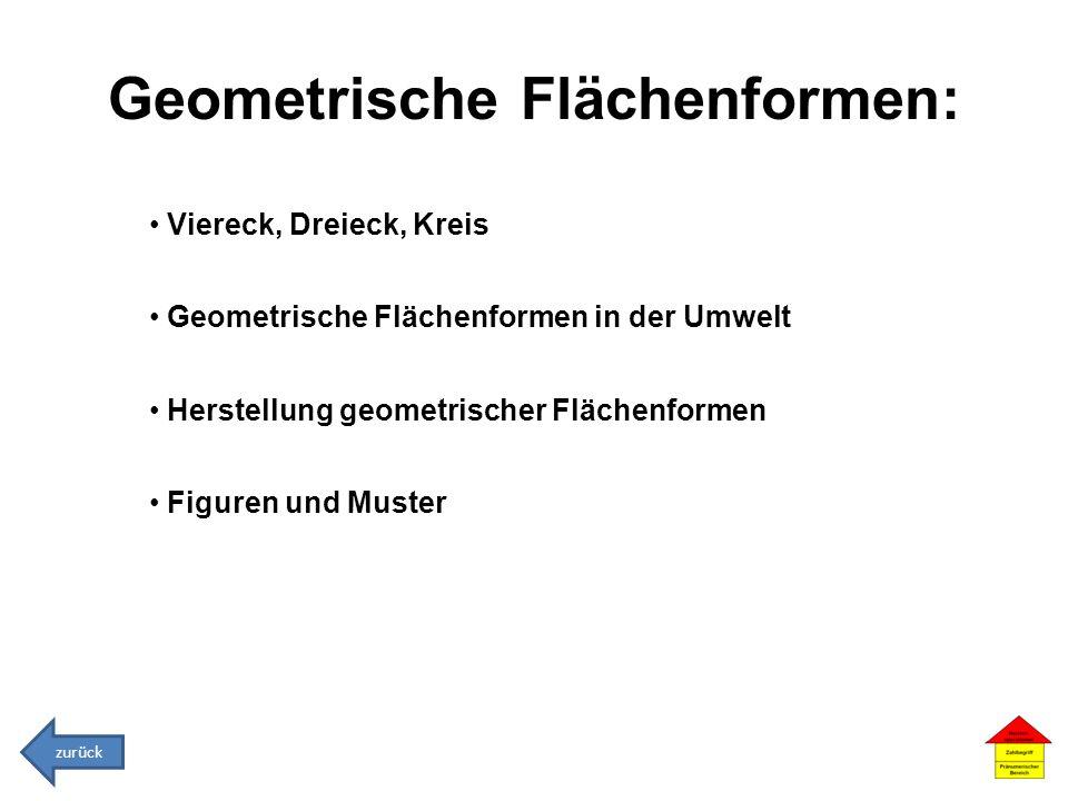 Geometrische Flächenformen: