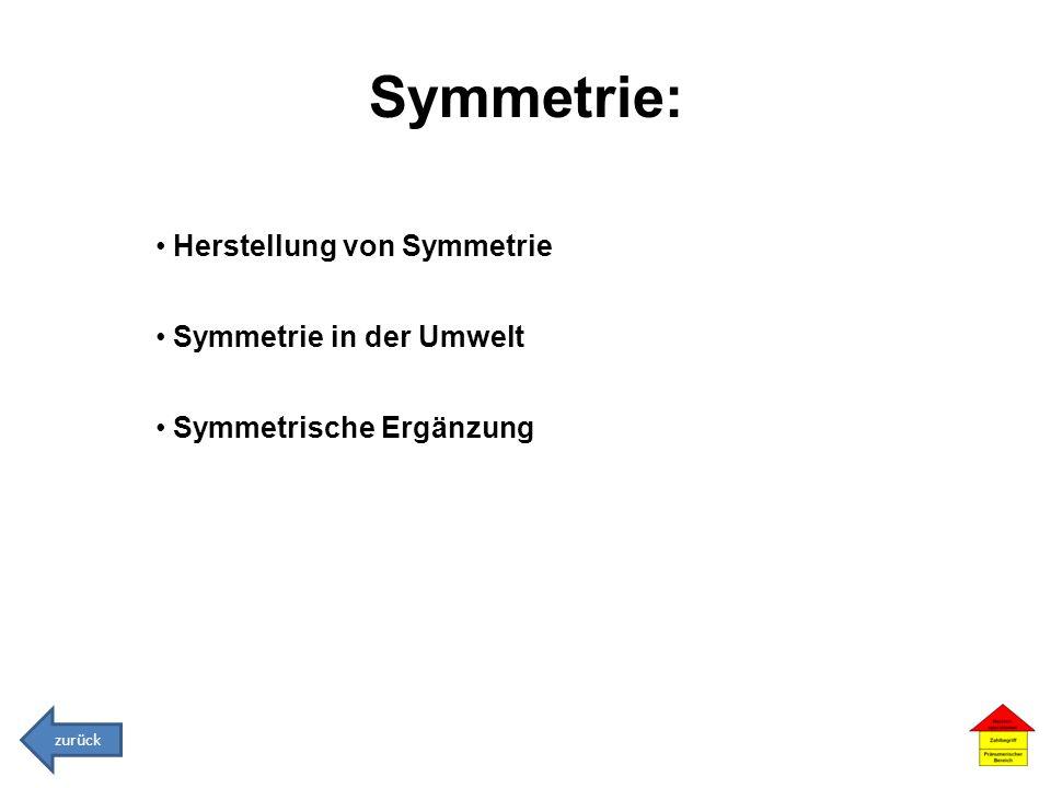 Symmetrie: Herstellung von Symmetrie Symmetrie in der Umwelt