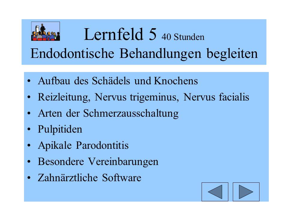 Lernfeld 5 40 Stunden Endodontische Behandlungen begleiten