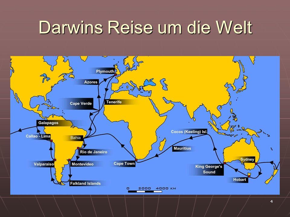 Darwins Reise um die Welt