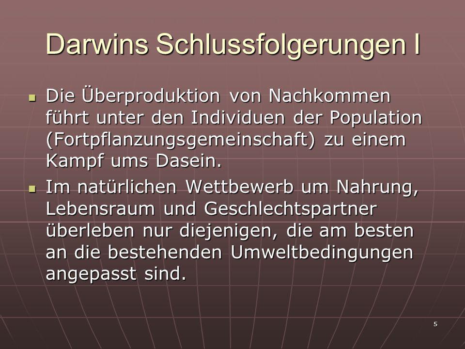 Darwins Schlussfolgerungen I