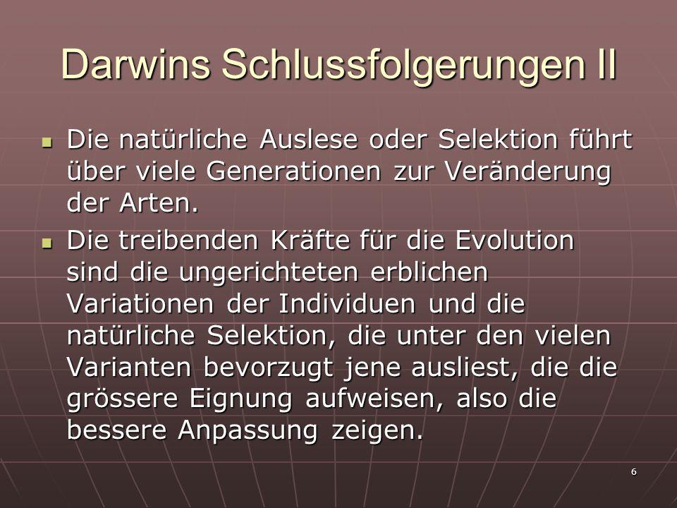 Darwins Schlussfolgerungen II