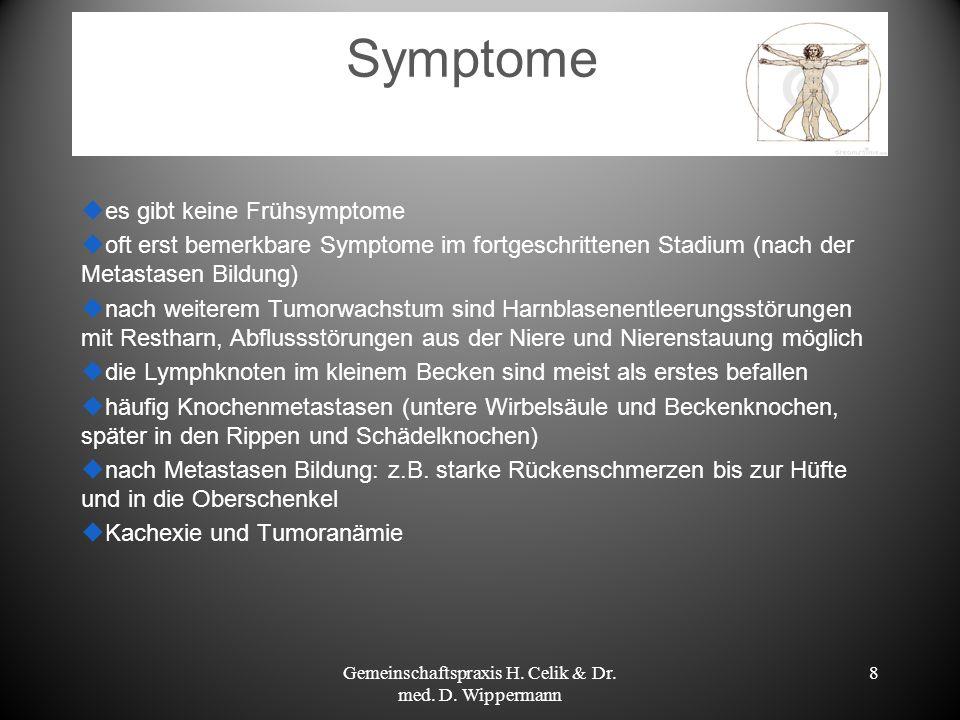 Gemeinschaftspraxis H. Celik & Dr. med. D. Wippermann