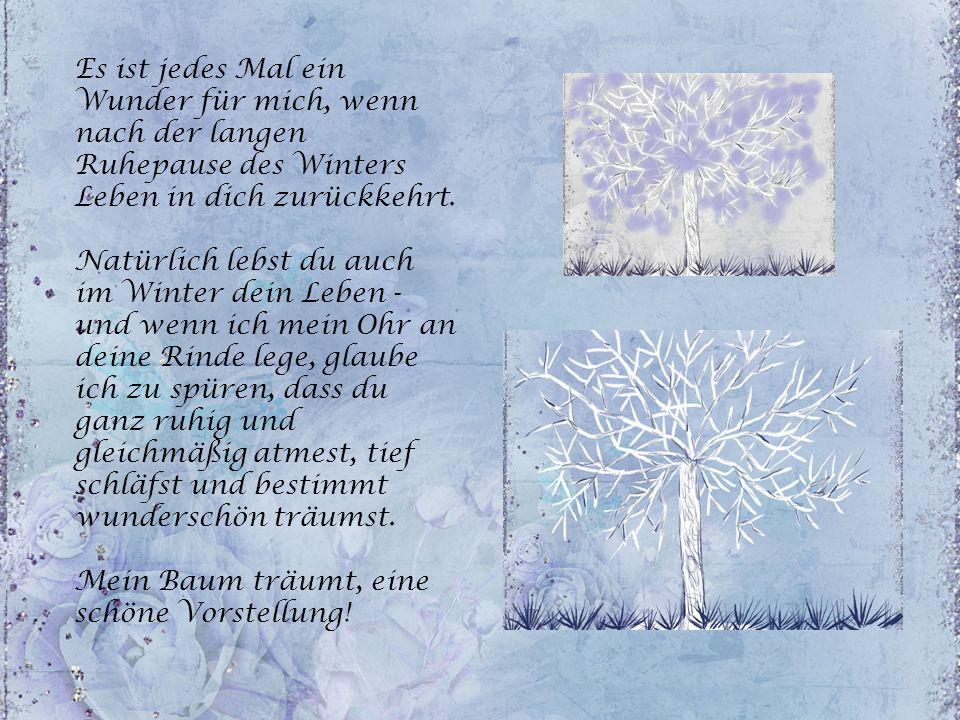 Es ist jedes Mal ein Wunder für mich, wenn nach der langen Ruhepause des Winters Leben in dich zurückkehrt.